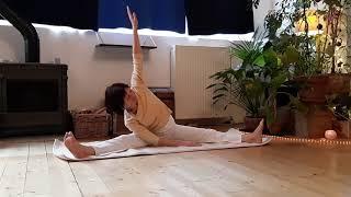 plusieurs vidéos de Yoga Cachemirien